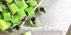 Penguin Candy *あめざいく体験教室*