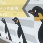 ペンギンがいる関西の水族館・動物園 おすすめランキング