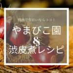 関西で栗拾いならココ!富田林のやまびこ園