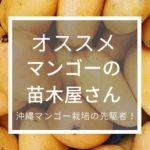 アーウィン・ファームでマンゴーの苗木を買ってみた【鉢で栽培中】